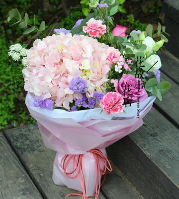 康乃馨鲜花