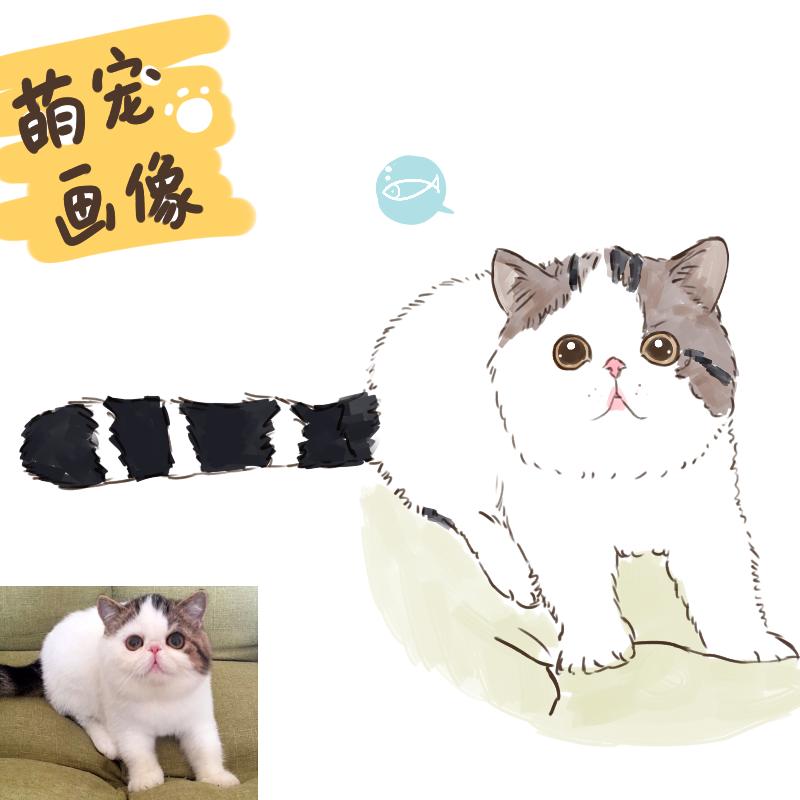 动物转手绘漫画插画