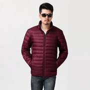 Autumn and winter season men's cotton short thin down male Korean young men special offer cotton padded jacket coat