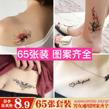 65 8.9 yuan tattoo stickers waterproof men and women persistent Korean personality fresh simulation sexy pig tattoo stickers