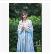 Chinese Female Costume Fairy Costume breasted chest jacket skirt wide sleeves costume Hanfu costume guzheng skirt