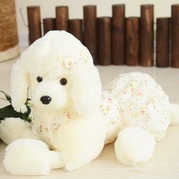贵宾犬毛绒玩具 趴趴狗公仔 小白狗布娃娃抱枕 儿童生日礼物女生