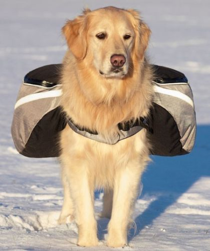 New Golden Retriever pet backpack dog backpack outdoor sports Pack large dogs carry premium dog bag-mail