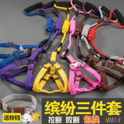 Puppy dog tow rope medium size dog walking dog rope small dog chain dog cat collar pet product