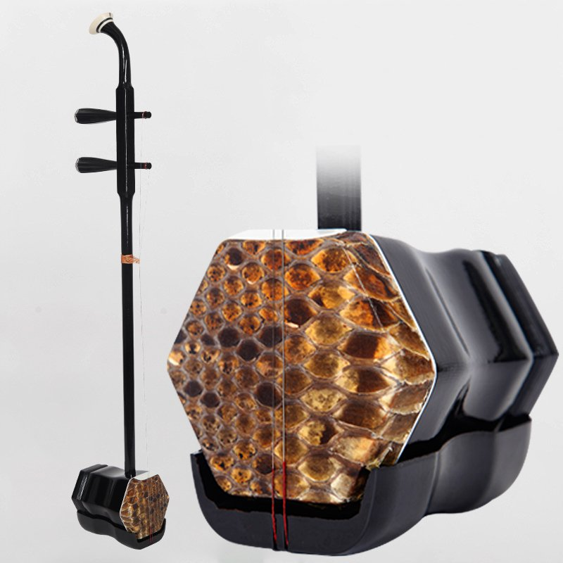 The new erhu musical instrument adult children General beginners Practice Test level performance Hu