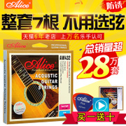 Authentic Alice, Alice ballad, wooden guitar string, six strings of imported steel strings, one string for the whole set