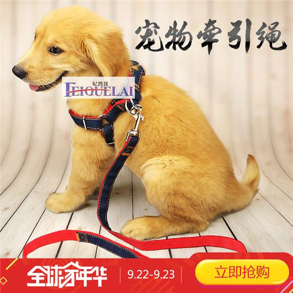 Dog collar chain Teddy GUI Bao small golden retriever puppy large rope pet ProductsHOME traction belt