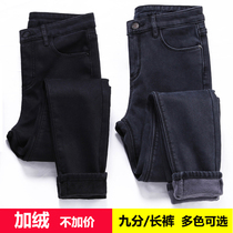 Winter yards thick and plush female fat mm high waist stretch velvet jeans feet pencil pants long 200 kg