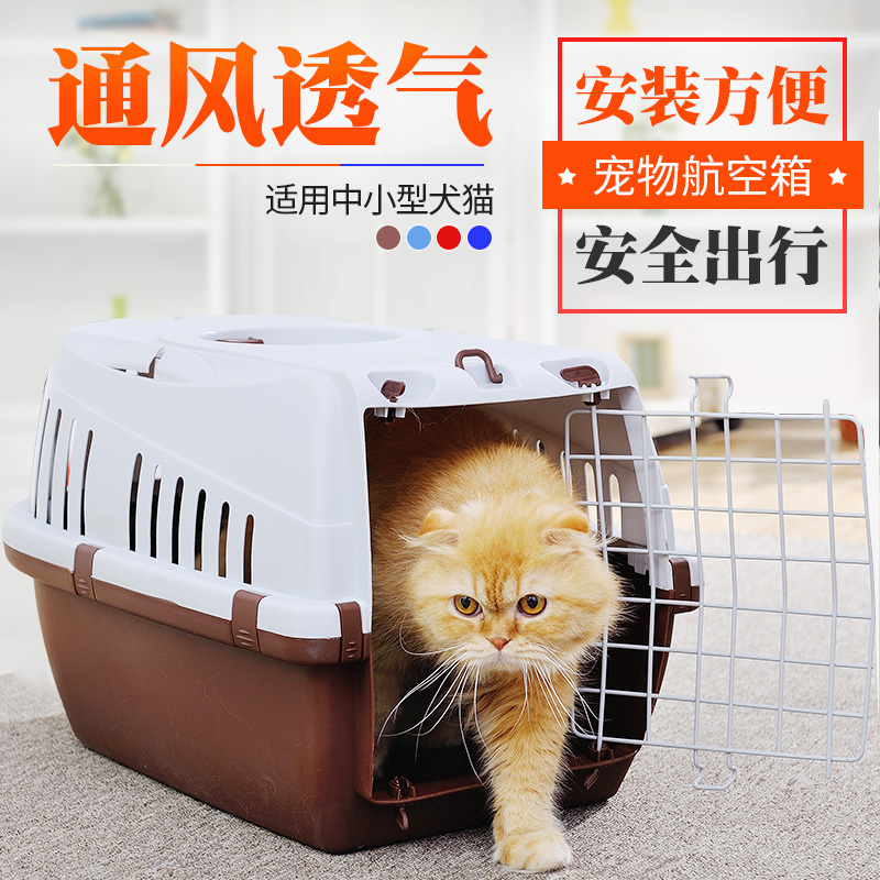 Grey - pet, air box, dog, cat out, suitcase, suitcase, suitcase, cat cage