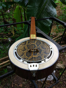 Male voice rosewood Python circular Qin 300 stringed instrument Qin ethnic musical instruments