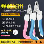 Pet dog dog nail clipper nail scissors nail clipper nail clipper nail scissors Teddy large small dog cat activities