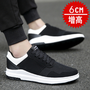 The increase in men's Korean tide men's casual shoes cloth shoes all-match tie student young men shoes in summer