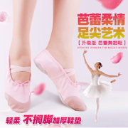 Adult children dance shoes soft soled ballet shoes girls dancing shoes canvas shoes cat Yoga Kungfu shoes shoes