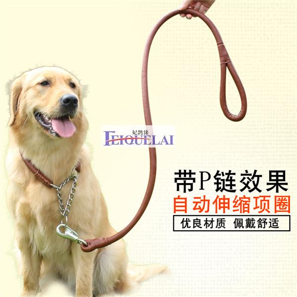 Pet supplies, leather rope, dog chain, medium size dog, large dog, golden leather dog, home traction belt