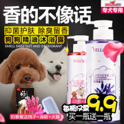 The dog wash Tactic pet bath sterilization deodorant antipruritic shampoo bear golden brown hair