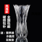 Fuguizhu hydroponic flower vase vase glass vase room XL large cylindrical transparent bag mail thickened