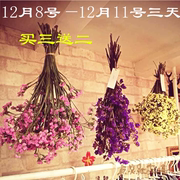 I forget Yunnan Mantianxing FLOWER FLOWER BOUQUET natural flower art living room decorative flower lovers really idiot mail