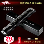 The 24 hole harmonica playing musical instruments for children beginners adult students entry self-study C harmonica