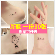 A 30 piece of tattoo and lasting waterproof small fresh sexy body tattoo painting simulation