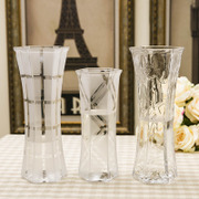 Modern minimalist large transparent glass vase decorated flower lily Fuguizhu hydroponic flower vase living room