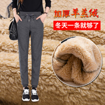 Autumn and winter lamb velvet plus velvet thickened Wei pants Female Male sports pants feet loose big yards warm long pants