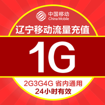 Liaoning mobile 4g mobile traffic prepaid 1G traffic card day Pack provincial General 24-hour effective