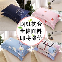 A pair of clothing cotton pillowcase 100%single cotton pillow cover whole head coat children cartoon thickening single household