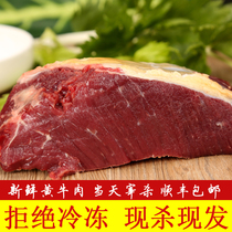 Authentic Farmhouse now kill fresh scalpers beef leg beef tendon beef Ridge Beef Brisket 1500g Shun Fung