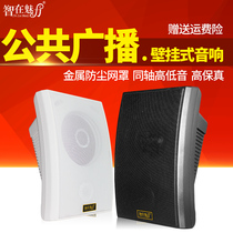 Wisdom in the charm ZL-728 wall speaker ceiling speaker ceiling audio campus broadcast background music hanging wall restaurant shop speaker constant pressure amplifier