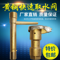 6 min Brass Quick access valve rod copper green water intake device to take the valve key sprinkler bolt garden DN20