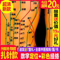Human acupuncture model meridian acuity chinese medicine body twelve copper man model figure small man needle practice small leather man
