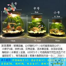 水族箱景观桌面玻璃缸瓶微生态创意景斗鱼观赏办公书桌客厅造缸