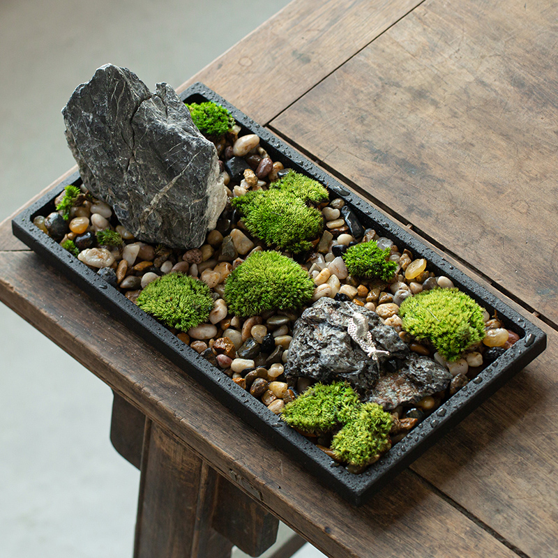 Creative bonsai Wujinshi tabletop Zen small ornaments idyllic space decoration Chinese wind tea ceremony green plant micro-view