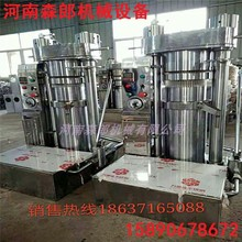 Commercial Hydraulic Press Grain and Oil Processing Equipment Sesame Oil Press Korean Automatic Hydraulic Fragrant Oil Press