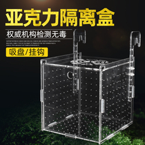 The pressure-kryptonic isolation box protects the small fish fry and young fish spawning isolation box large external hanging hatching box fish tank isolation box
