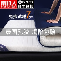 Antarctic mattress winter latex padded padded single dormitory bed mattress warm mattress tatami sponge mat