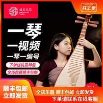 Sheng Le s8914 playing grade Rosewood Pipa musical instrument adult beginner beginners a video 5514AA
