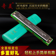The 24 hole tremolo harmonica CMO C harmonica for beginners children adult students' entry to practice musical instruments harmonica