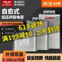 Delixi self-healing low voltage shunt power capacitor BSMJS0 45 Withstand voltage 450V reactive power compensation 20-3
