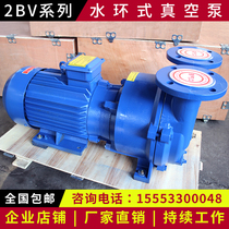 Zibo water ring Type vacuum pump 2bv5110 5111 5121 5131 5161 circulating Industrial Vacuum pump