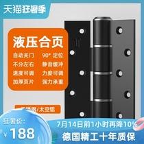 Germany DEINAR invisible door hinge Invisible door hydraulic spring hinge door closer Buffer automatic closing hinge
