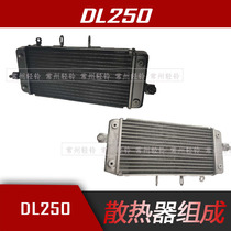 Suitable for GW250 F S DL250 GSX250R-A water tank radiator cooling sub-water tank with anti-counterfeiting