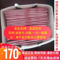 Every day net lady luxury pad private pad authentic counter gynecological care conditioning private parts ovary 20 pieces