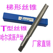T-thread machine tap tap ladder type tapping TR10 12t16 20 22t26 28x5x4x3x2 CIS right tooth