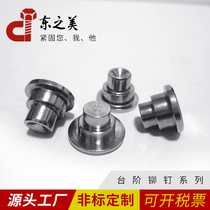Stainless steel Step Rivet Double-section eccentric inner hexagonal rivet to map sample non-standard customization system