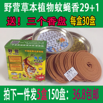 Guangxi Camping Mosquito Incense batch camping mosquitoes and flies fragrant 29+1 plant Chinese herbal medicine mosquito incense home wild mosquito Incense