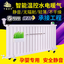 New hydropower heating chip intelligent temperature control heating rod Energy saving filling water steel humidification cooling heater Household
