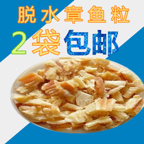 Dried octopus octopus small meatballs pickled Chapter Fish dehydrated Octopus Granules 1000 grams