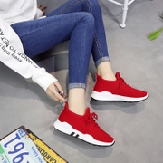 2017 new autumn and winter ulzzang leisure shoes female students all-match plus lint thick soled running shoes