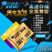 Action tiger 16g memory card sd memory card high-speed read and write tf card Class10 16g phone memory card